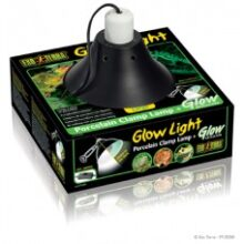 PT2056_Glow_Light_Packaging72-228x2281